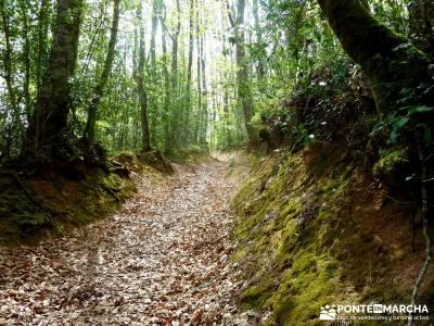 Cañones Ebro, Alto Campoo, Brañosera,Valderredible; volcanes en olot;monumentos naturales de astur